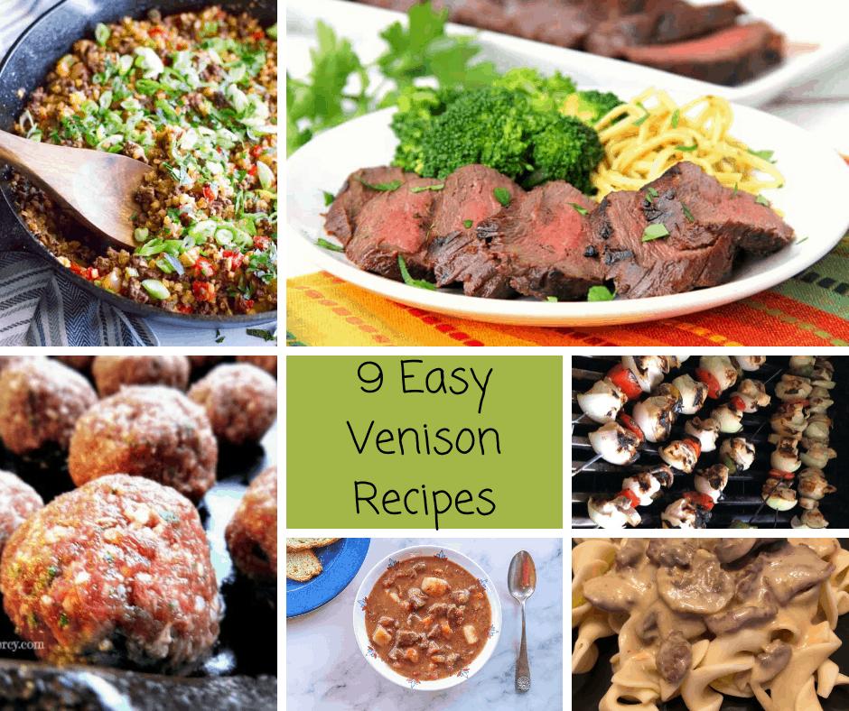 9 Easy Venison Recipes