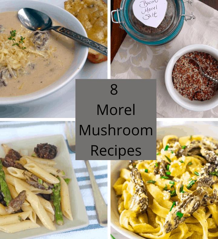8 Morel Mushroom Recipes