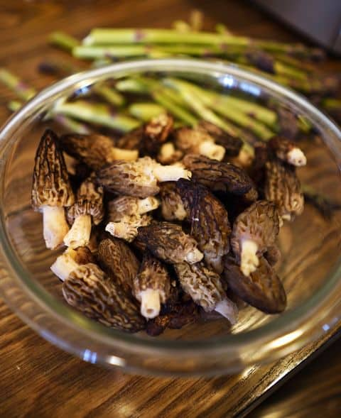 Michigan Morel Mushrooms and Asparagus.