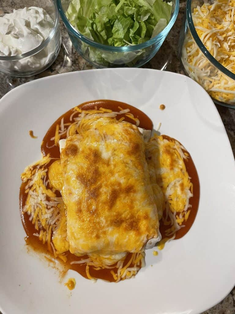 Broiled Wet Burrito
