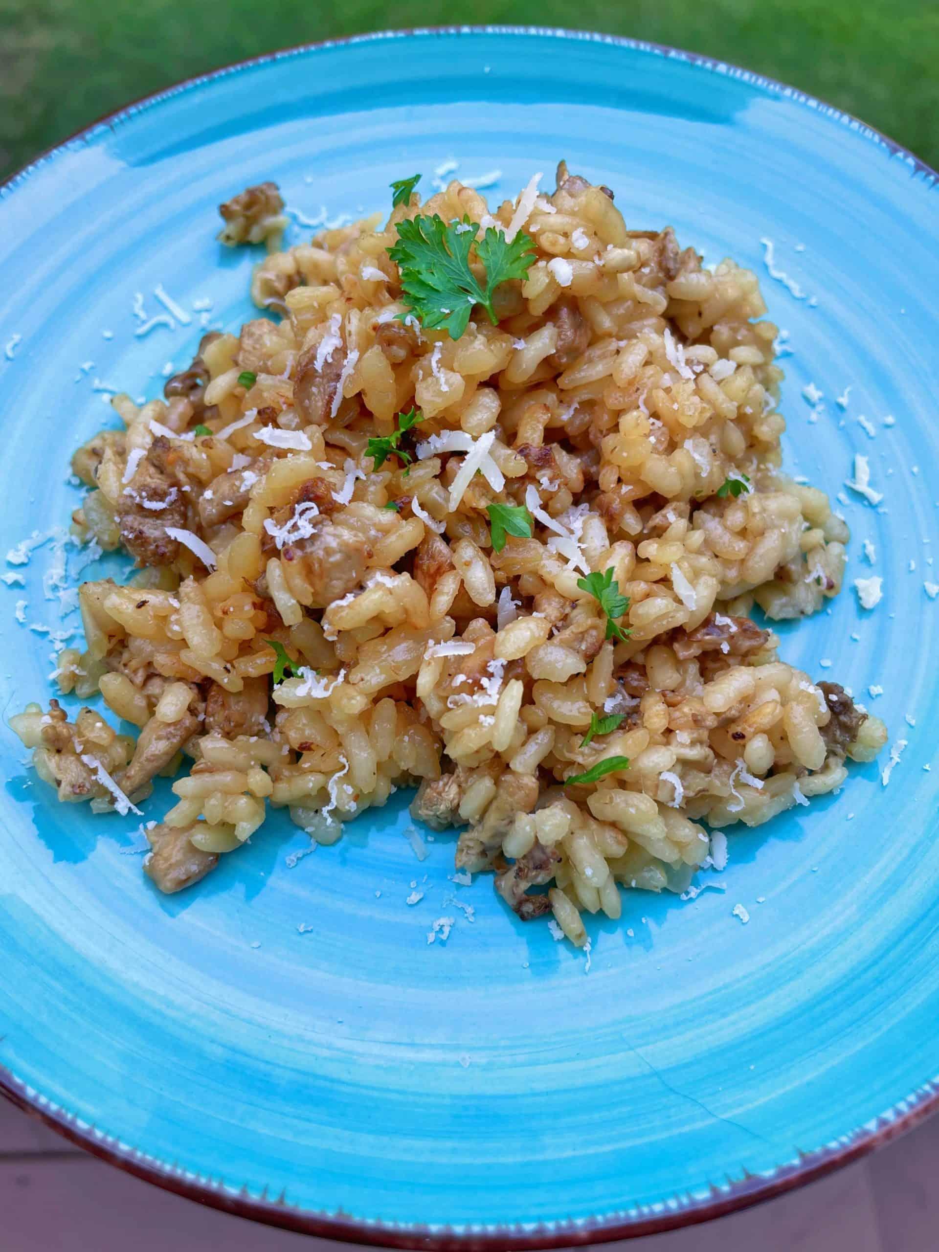 Mushroom Parmesan Risotto on a plate.
