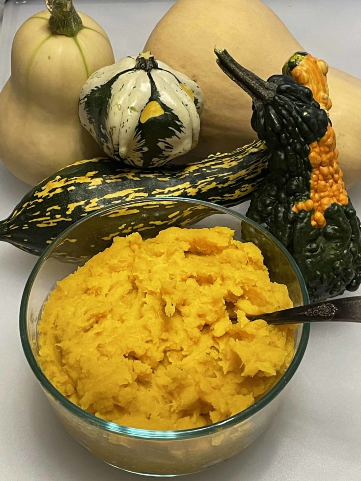 Mashed Butternut Squash in a bowl with an assortment of squashes in the background.